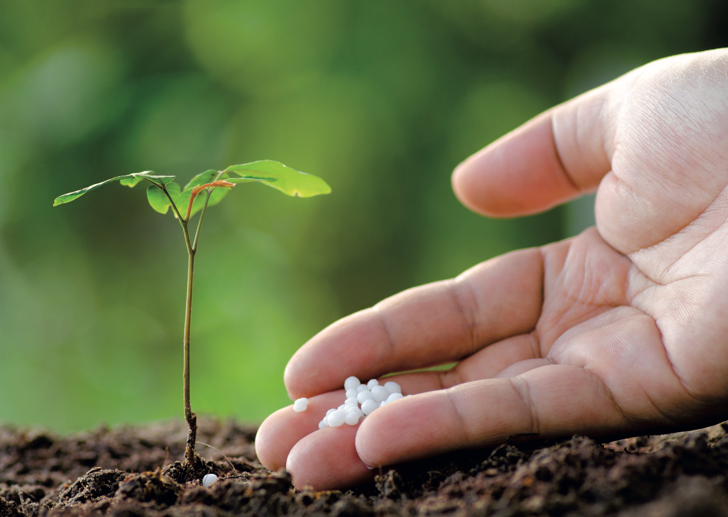 kako popraviti kvalitet zemljišta